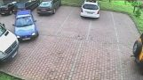 Όταν οι πριγκίπισσες παρκάρουν