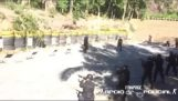 Ejercicio peligroso con munición