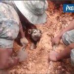 Διάσωση σκύλου μετά από κατολίσθηση