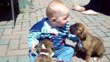 Zwei Welpen und ein baby