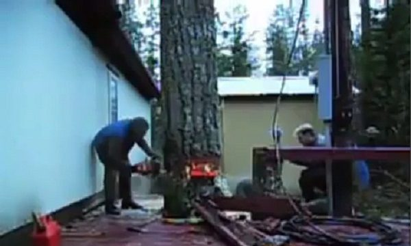 kövér fa égetése)