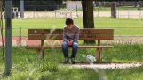 आप एक लापता बच्चे पहचान सकते हैं? (सामाजिक प्रयोग)