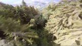 Wingsuit vlucht tussen de bomen
