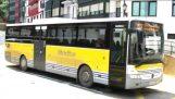 Фліп автобуса в автоматичному платформи