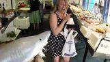 शरारत: लाइव शार्क मछली की दुकान पर