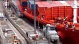 Canale di Panama nave incidente