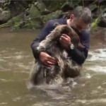 Παιχνίδι με μια αρκούδα στο νερό