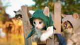 Το Assassin's Creed Unity με… γατάκια