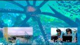 FULL POV Kraken Unleashed VR roller coaster experience at SeaWorld Orlando