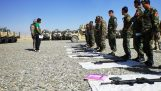Afgánok A görög hadsereg