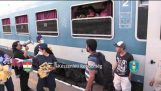 KR Bicske, Hungary – train station. Food and water support rejected by refugees