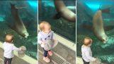 愛らしい幼児とシールの水族館で一緒に遊ぶ