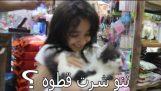 Kúpil môj visiace mačička Nano 4th pravdu a nie chýba pes !!