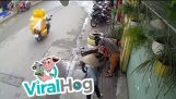 मोटरसाइकिल साइकिल चालक घुड़सवार भाला-युद्ध से बाहर ले जाया