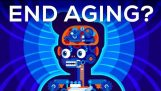 Why Age? Should We End Aging Forever?