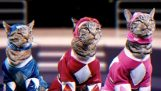 Mighty Morphin Meower Rangers