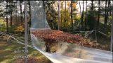 Caída en las hojas