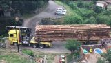 Logging truck crossing bridge like a boss