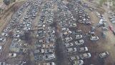422 αυτοκίνητα καίγονται κατά την διάρκεια ενός φεστιβάλ
