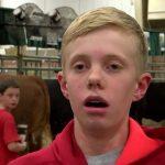 Η εκδίκηση των αγελάδων