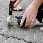 Διάσωση σε γατάκι που σφήνωσε το κεφάλι του σε βάζο