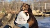 The touching friendship between a bear and a human