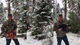 一個美國人砍聖誕樹