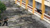 Αστυνομικοί στο Βιετνάμ σκαρφαλώνουν ένα κτίριο χρησιμοποιώντας ένα κοντάρι
