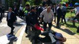 guardie del corpo di Erdogan attaccano i manifestanti