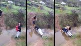 Ένας ιπποτικός νεαρός βοηθά την κοπέλα του να διασχίσει ένα ρυάκι