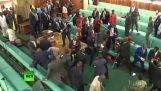 Drevo a chaos v ugandskej parlamente