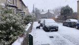 Ένας σκύλος βλέπει για πρώτη φορά το χιόνι