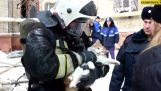 Russian firefighters save the life of a cat