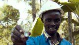 الرجل الذي بنى له محطة الطاقة الخاصة في كينيا