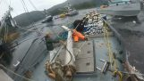 Αλιευτικά σκάφη σε πόλεμο