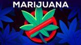 Три аргументи против легализирането на канабиса