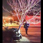 Μεθυσμένη οδηγός κινείται με ένα δέντρο καρφωμένο στο καπό του αυτοκινήτου