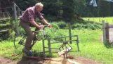 Το ποδήλατο-πριόνι