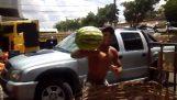 Ekspert på å fange vannmeloner