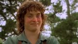 Коли Фродо п'яний