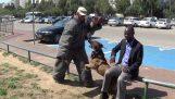 Εκπαιδευμένος σκύλος εναντίον επιθέσεων με μαχαίρι