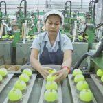 Πως κατασκευάζονται τα μπαλάκια του τένις
