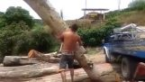 Σήκωσε μόνος του έναν κορμό δέντρου