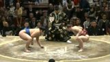 Sumo: hastighed vs magt