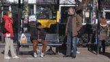 Ρατσιστική επίθεση σε στάση λεωφορείου (κοινωνικό πείραμα)