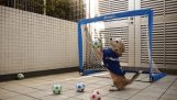 The hard training of dog-goalie