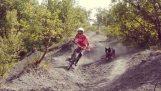 Ποδηλατική κατάβαση παρέα με ένα σκύλο