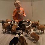 Πως είναι να ζεις με 16 κουτάβια