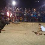Μην προκαλείς ένα ταύρο