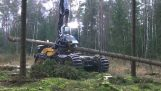 O maşină de eficient pentru tăiere de copaci